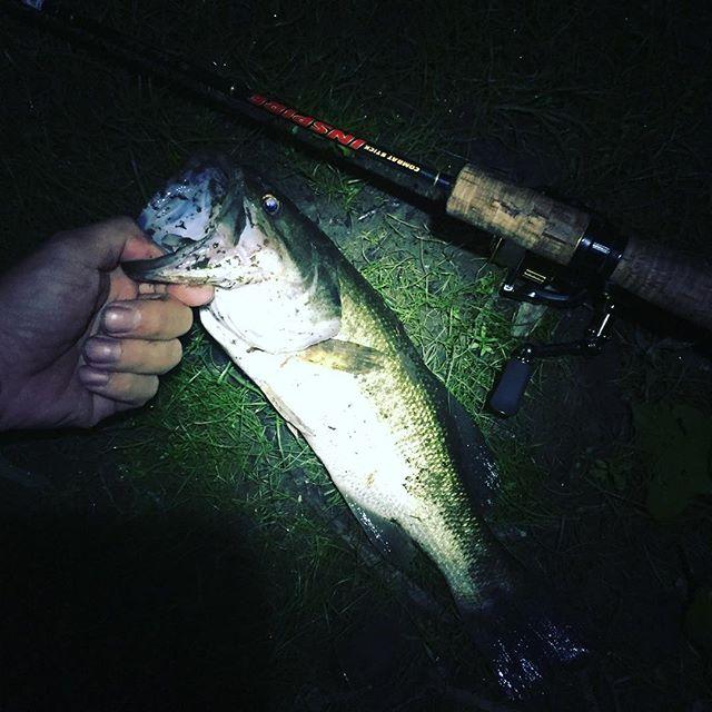 夜は長いよ〜〜w2投目で釣れたw#ブラックバス #バス釣り #deps #ゲーリーヤマモト