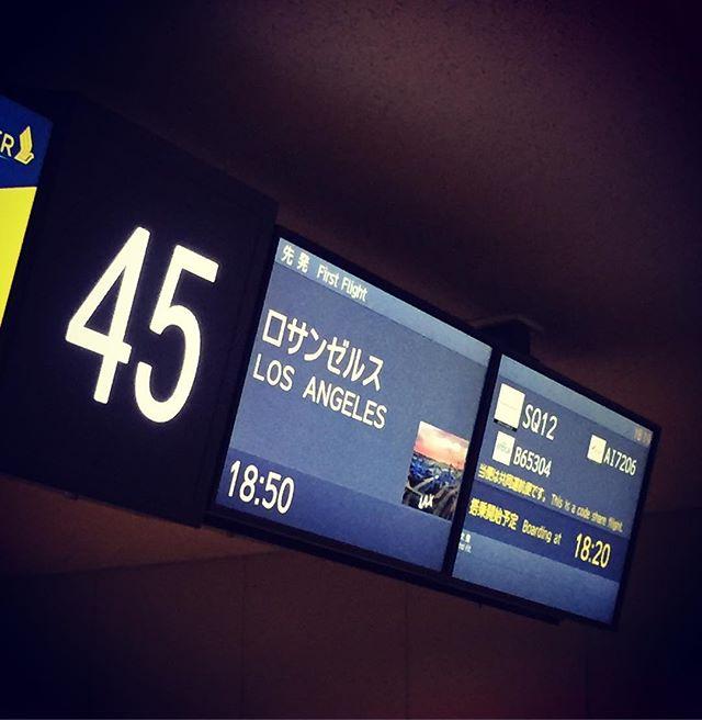 チェックイン後に忘れ物発覚️ 空港で働く宮田パイセンに土下座して会社にトンボ帰りしてなんとか間に合いましたそれでは行ってまいりますw#sema #losangels #空港近くてよかった