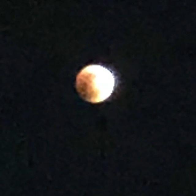 皆既月食  流石に写らないかw#千葉北 #皆既月食 #ブルームーン